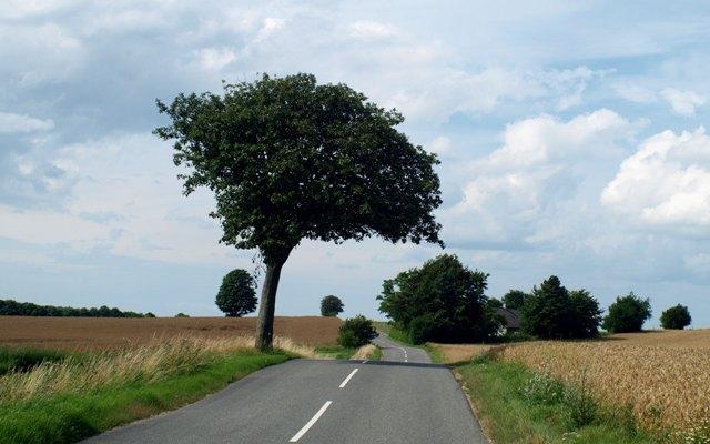 Езда за городом требует не меньшей концентрации