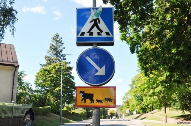Знак особых предписаний о переходящих дорогу кошках